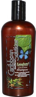 حمام، الجمال، الشعر، فروة الرأس، الشامبو، مكيف Caribbean Solutions, Rainforest Citrus Mint Shampoo, 8 oz
