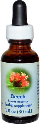 Flower Essence Services, Beech, Flower Essence, 1 fl oz (30 ml) ,Herb-sa