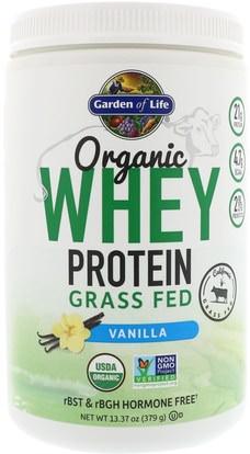Garden of Life, Organic Whey Protein Grass Fed, Vanilla, 13.37 oz (379 g) ,والرياضة، والمكملات الغذائية، بروتين مصل اللبن