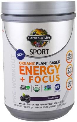 Garden of Life, Sport, Organic Plant-Based Energy + Focus, Pre-Workout, Blackberry, 15.3 oz (432 g) ,والرياضة، تجريب
