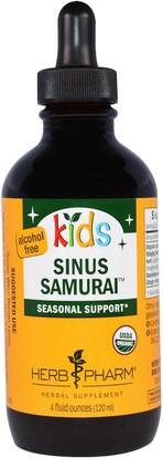 Herb Pharm, Kids Sinus Samurai, Alcohol Free, 4 fl oz (120 ml) ,صحة الأطفال، العلاجات العشبية للأطفال