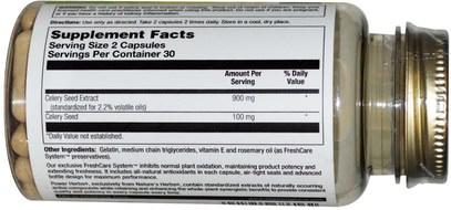 الأعشاب، بذور الكرفس Natures Herbs, Celery Seed-Power, 450 mg, 60 Capsules