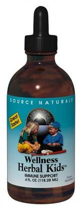 Source Naturals, Wellness Herbal Kids, 4 fl oz (118.28 ml) ,صحة الأطفال، سعال انفلونزا البرد، الانفلونزا الباردة والفيروسية، منتجات صيغة العافية
