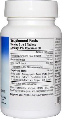 المكملات الغذائية، المضادات الحيوية، إشنسا و غولدنزيل، الصحة، ورقة الزيتون Planetary Herbals, Echinacea-Goldenseal with Olive Leaf, 635 mg, 60 Tablets