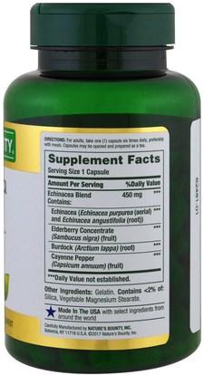 المكملات الغذائية، المضادات الحيوية Natures Bounty, Echinacea Complex, 450 mg, 100 Capsules