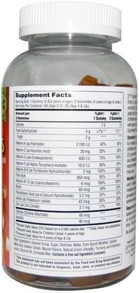 الفيتامينات، الفيتامينات المتعددة، الأطفال الفيتامينات، منتجات حساسة للحرارة 21st Century, Zoo Friends Multi Gummies, Childrens Multivitamin Supplement, 150 Gummies