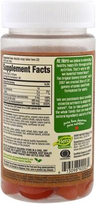 الفيتامينات، وفيتامين ب، وفيتامين ب 12، وفيتامين ب 12 - سيانوكوبالامين، والمكملات الغذائية، غوميز Hero Nutritional Products, Slice of Life, Organics, Energy + B12, Adult Gummy Vitamins, Natural Berry Flavors, 60 Gummies