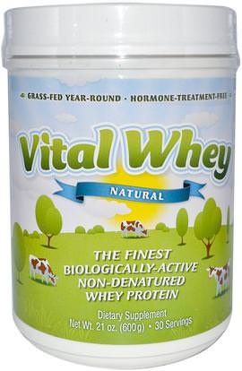 Well Wisdom, Vital Whey, Natural, 21 oz (600 g) ,المكملات الغذائية، بروتين مصل اللبن