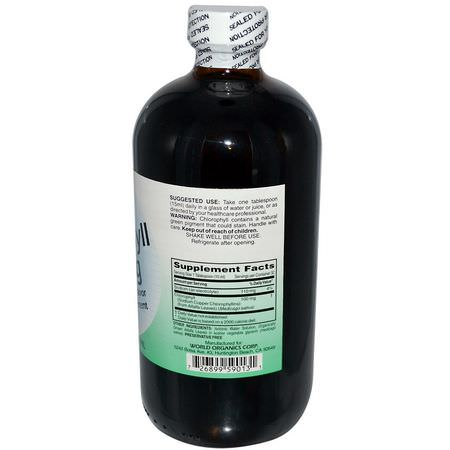 World Organic, Liquid Chlorophyll, 100 mg, 16 fl oz (474 ml):كل,ر,فيل, س,برف,دز